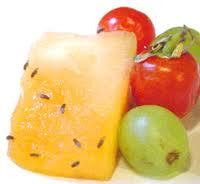 fruit gnats
